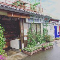 産直市場グリーンファーム(直売所)/ 伊那